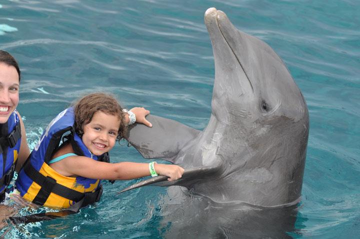 CTbC - Activity - Swim with Dolphins - Hug