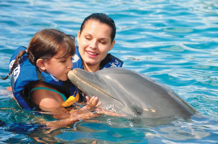 CTbC - Activity - Swim with Dolphins - Kiss