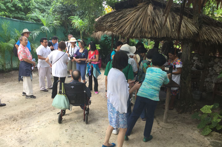 Island Tour with Limited Mobility - Mayan Village